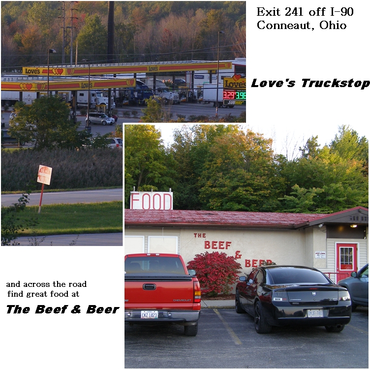 Loves gas stop and great food at Ohio Exit 241 off I-90