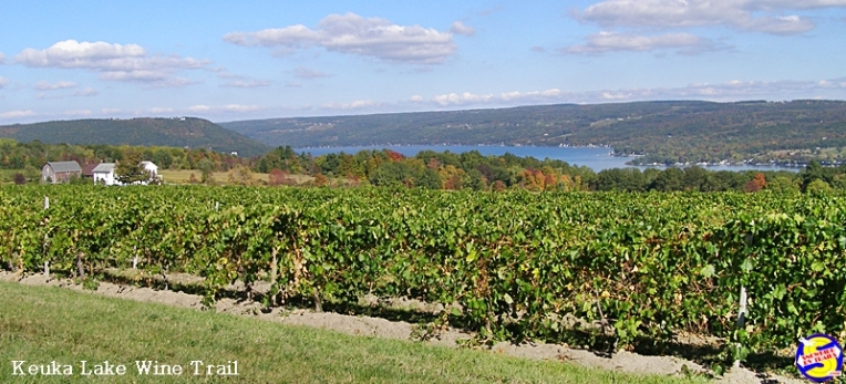 Keuka Lake Wine Trail overlooking the Lake