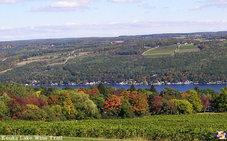 On the Keuka Lake Wine Trail