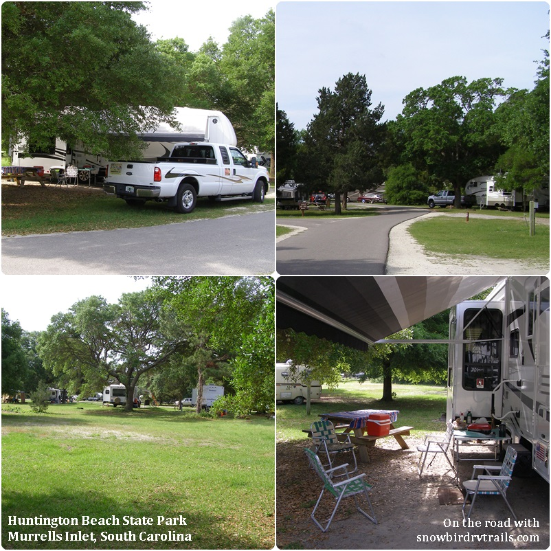 Campsites In The Huntington Beach State Park Camping Area