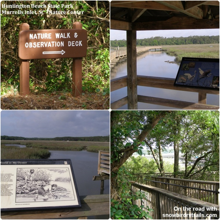 Huntington Beach State Park's Nature Center