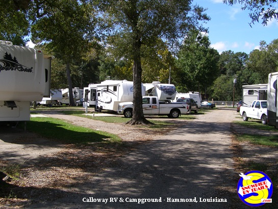 Pull-Thru sites at Calloway RV and Campground in Hammond, Louisiana
