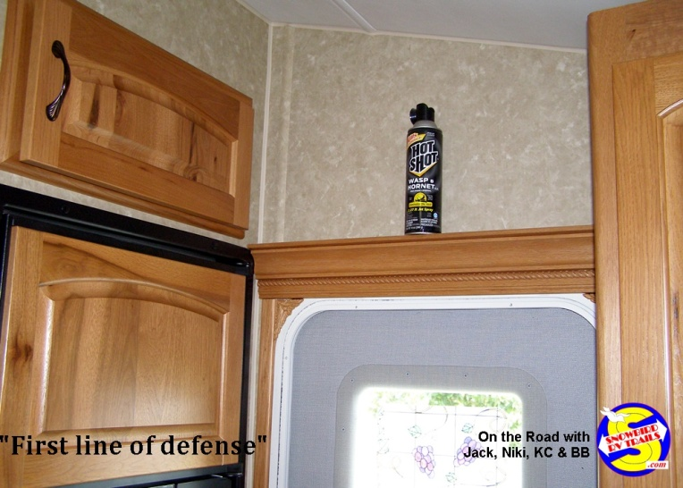 Hornet and wasp spray to defend life and your RV