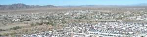 """Snowbird nests create """"White Cities"""""""