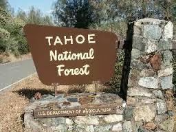 tahoenatlforest